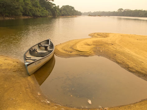 A canoe on the Moa River just off Tiwai Island, Sierra Leone