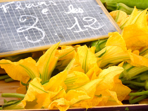 Fleurs de courgettes, zucchini flowers, from a market in Nice, France